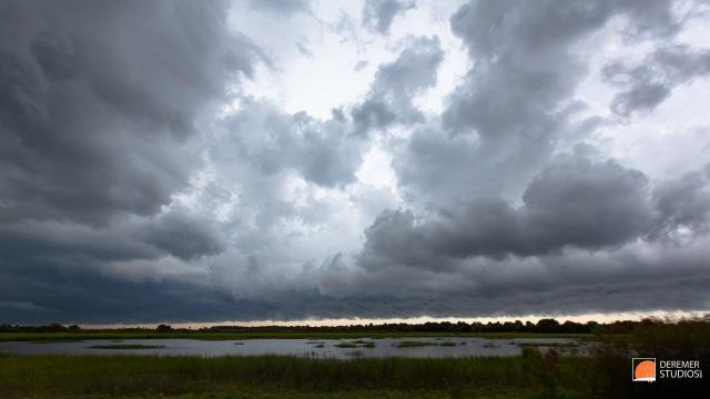 2013 08 Fine Weather Jacksonville 01